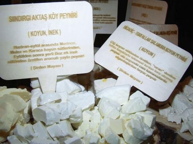 Balıkesir 50 çeşit peyniriyle tanıtıldı