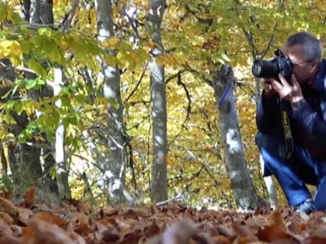 Fotoğrafçılar sonbahar manzaraları için rotasını Manisa'ya çevirdi