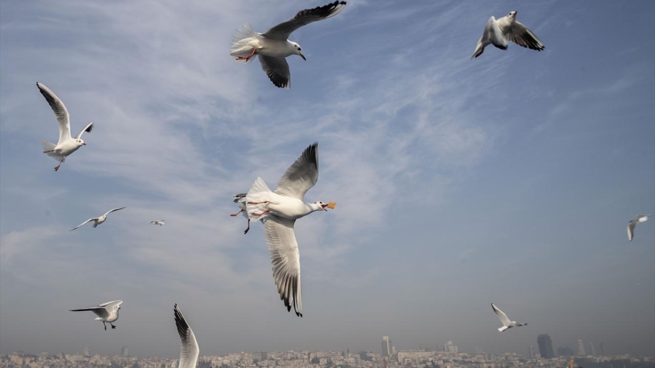 İstanbulda günlük yaşam