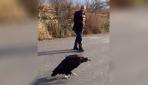 """Nesli tehdit altında olan """"kara akbaba""""yı iki arkadaş yolda görüntüledi"""
