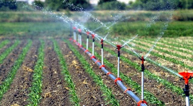 Güneydoğuda sulanan arazilerden ekonomiye 2 milyar 888 milyon liralık katkı