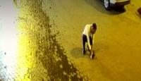 Soluk borusu tıkanan kediyi kurtardı