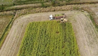 Tarıma dayalı yatırım projeleri için süre uzatımı
