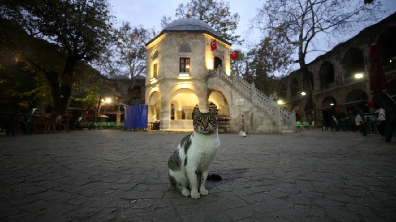 İpek Yolunun son durağı, Bursanın incisi: Kozahan