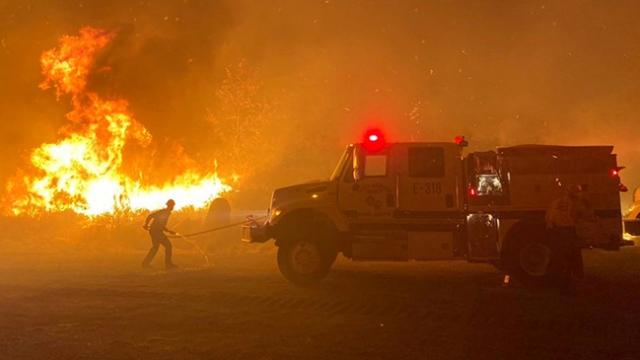 California'da yeni orman yangını dalgası