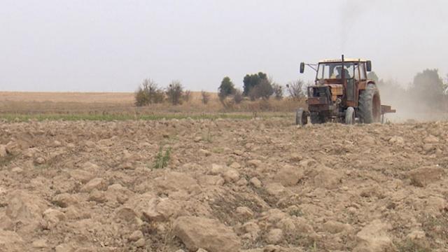 Terör örgütünün zarar verdiği tarlalar yeniden filizlenecek