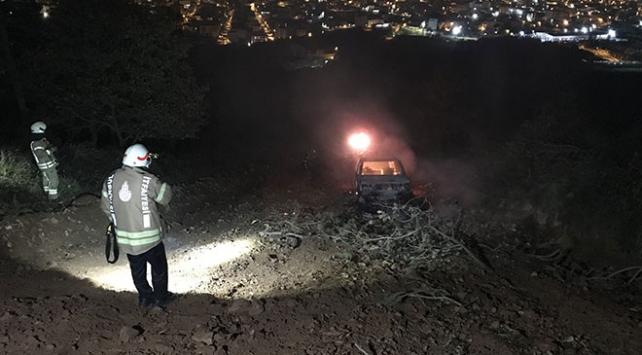 İstanbulda ormanlık alanda araç yangını