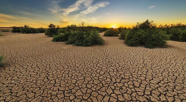 Dünya Sağlık Örgütü: İklim değişikliği 21inci yüzyılda en büyük sağlık tehdidi olabilir