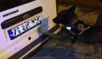Van'da narkotik köpeği Rexo, 45 kilo eroin buldu