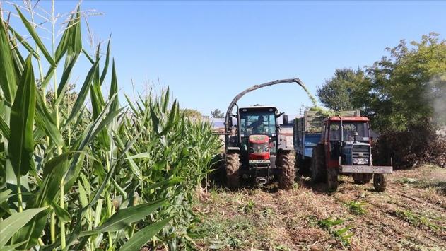 Kırsal kalkınmada 84 proje için 113 milyon lira destek