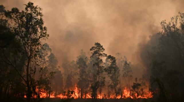 Avustralyada yangınların gelecek haftalarda devam etmesi bekleniyor