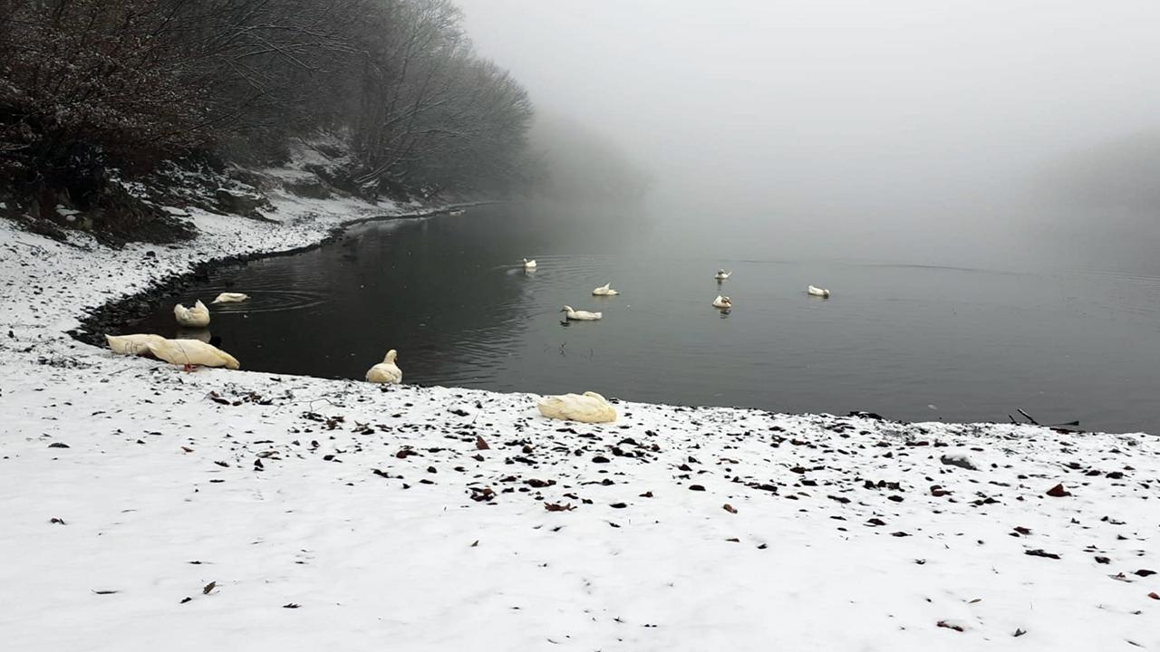 Sabah saatlerinde başlayan kar yağışı kartpostallık görüntüler oluşturdu