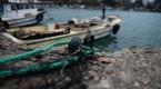 Balıkçılar bu yıl palamutta umduğunu bulamadı