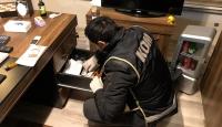 Malatya'da tefeci operasyonunda 5 gözaltı