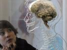 Monoton yaşam beynin küçülmesine yol açıyor