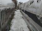 Antalya'daki dolu ve sağanak nedeniyle Kaş ilçesindeki seralarda su baskını yaşandı