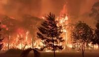 Avustralya'da bilanço ağırlaşıyor: 744 ev yandı