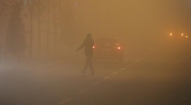 Ağrı ve Erzurumda yoğun sis