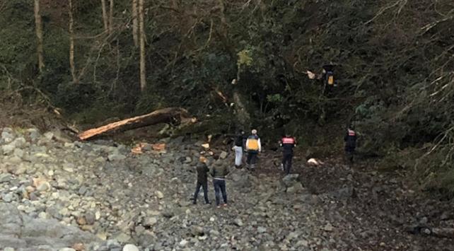 Rizede kestikleri ağacın altında kalan çift hayatını kaybetti