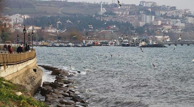 Marmara Denizinde ulaşıma lodos engeli