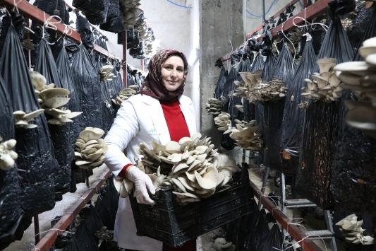 Üniversite mezunu kadın, girişimcilik hayalini Genç Çiftçi Projesi ile gerçekleştirdi