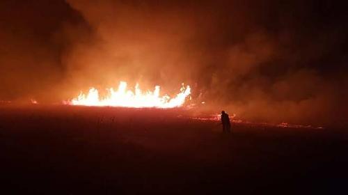İznik Gölü kıyısındaki sazlık alanda yangın