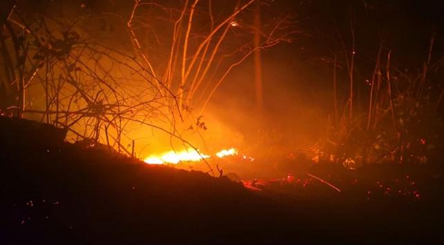 Orduda fındık arazisi ve ormanda çıkan yangınlar kontrol altına alındı