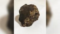 Ceviz ağacı dikerken meteorit buldu