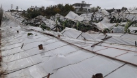 Mersin'de fırtına seralara zarar verdi