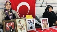 Diyarbakır annelerinin evlat nöbeti 113'üncü gününde
