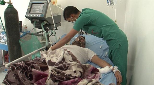 Yemende domuz gribinden 8 kişi öldü