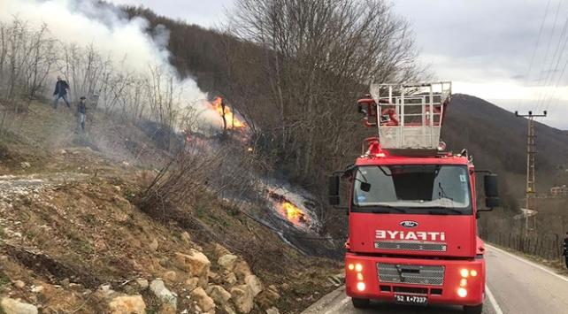Karadenizdeki orman yangınlarında son durum