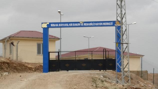 HDPli belediyenin hayvan barınağında havan mermisi bulundu