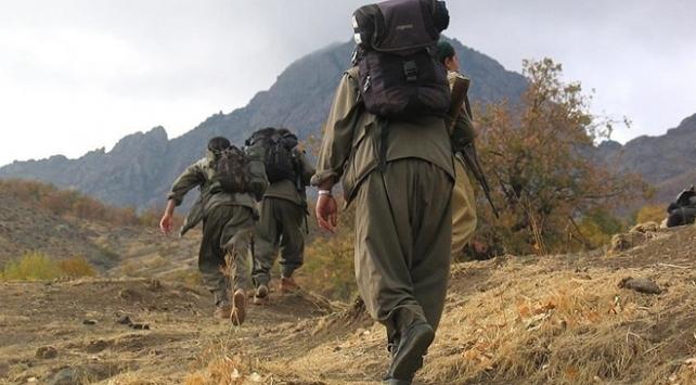 5 PKKlı terörist güvenlik güçlerine teslim oldu