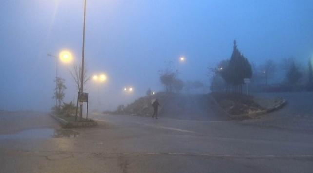 Kilis sisle kaplandı