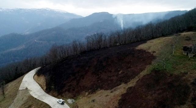 Karadenizdeki yangınlar söndürüldü, zarar ortaya çıktı