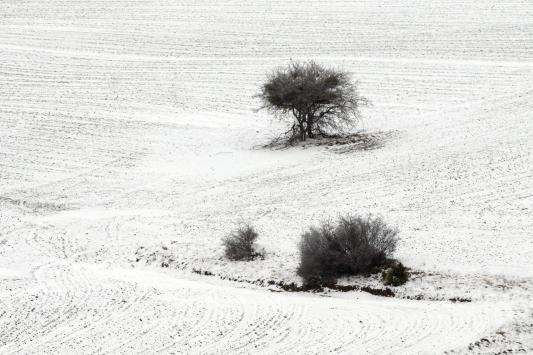 Konyanın yüksek kesimlerinde kar yağışı etkili oldu