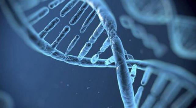 İnsan embriyosuna yasa dışı gen düzenlemesi yapan doktora hapis