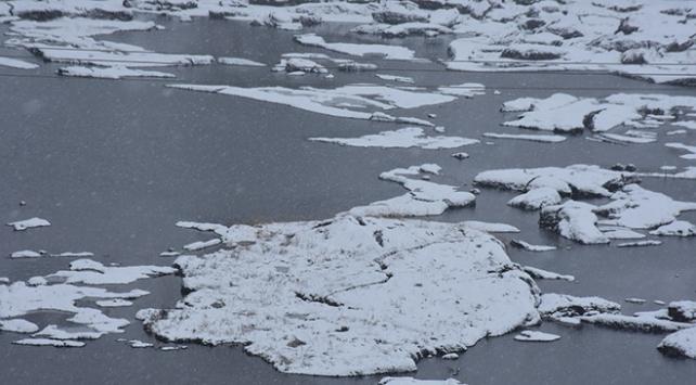 """Çat Barajındaki """"yüzen adalar"""" dondu"""
