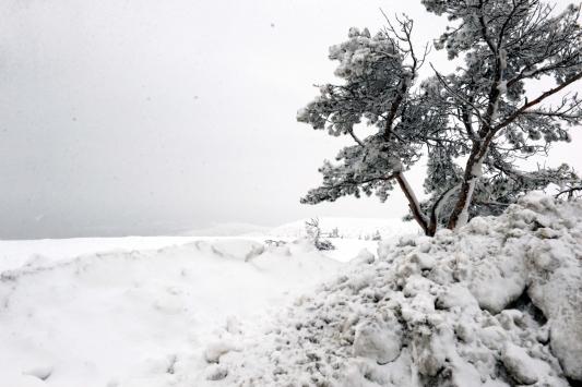 Tokatta kar yağışı yüksek kesimlerde etkili oldu