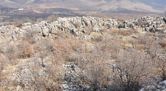 Adıyamanda Roma dönemine ait yerleşim alanı bulundu