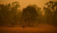 Avustralya'da 10 milyon hektardan fazla alan küle döndü