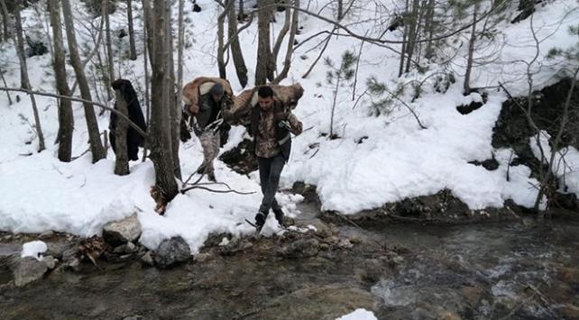 Antalyada 3 yaban keçisini vuran kişilere 75 bin lira ceza