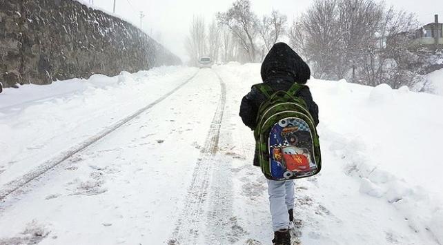 Vanın 2 ilçesinde kar nedeniyle eğitime ara verildi