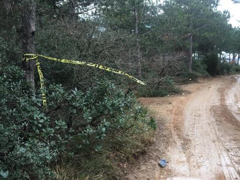 Arnavutköyde ormanlık alanda kadın cesedi bulundu