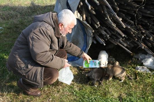 Kocaelide yağmur suyu kanalına sıkışan köpeği itfaiye ekipleri kurtardı