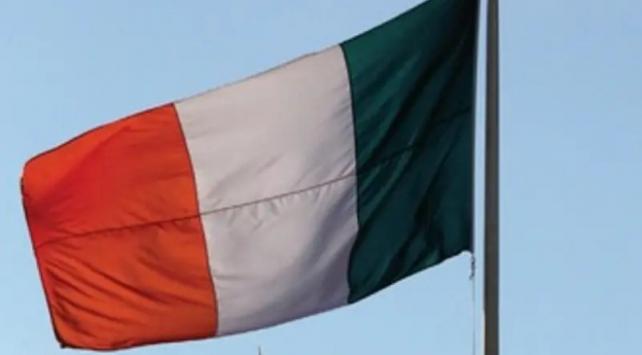 İrlandada genel seçim 8 Şubatta yapılacak