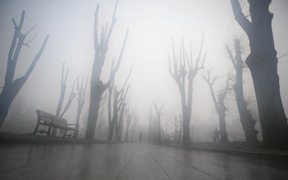 Düzcede sis nedeniyle görüş mesafesi 30 metreye düştü