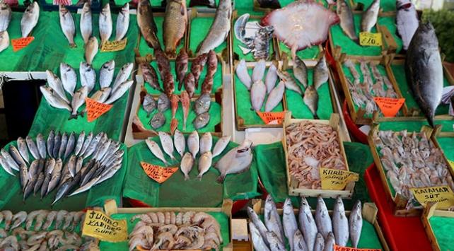 Küresel ısınma balıkları da tehdit ediyor