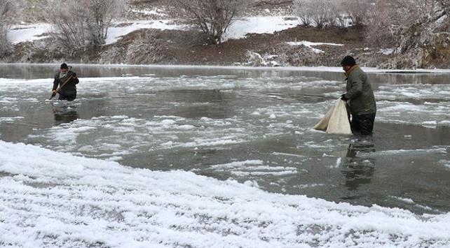 Buz gibi suya ağ atıyorlar